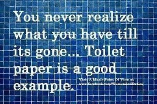 3-1 2013 toilet paper good