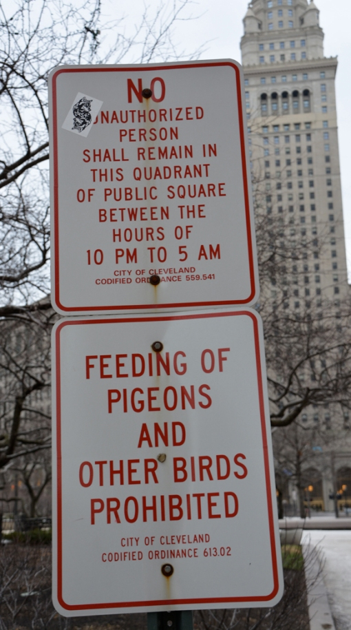 3-21 2013 no feeding pigeons