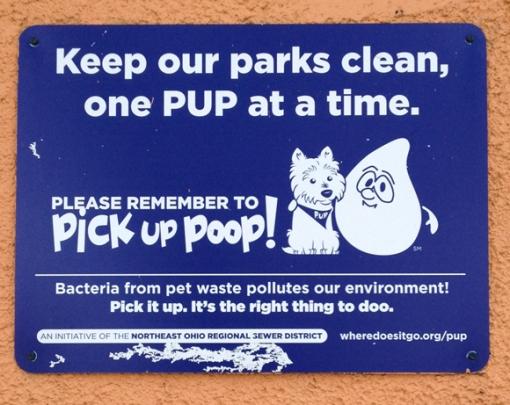 3-29 2013 poop