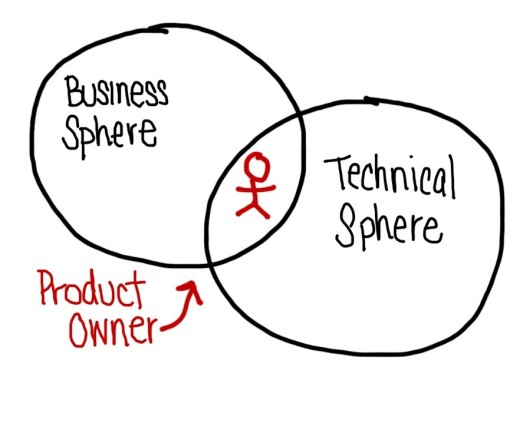 Product Owners span the gap between the business and technical spheres.
