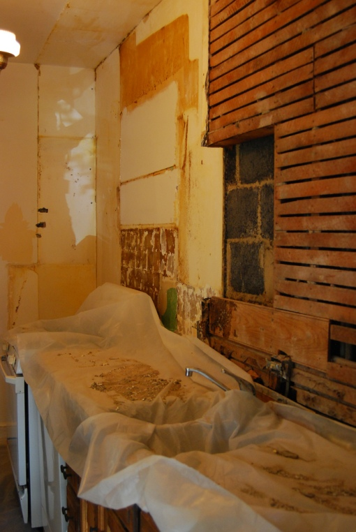 Kitchen remodeling is an epic comprised of many stories.