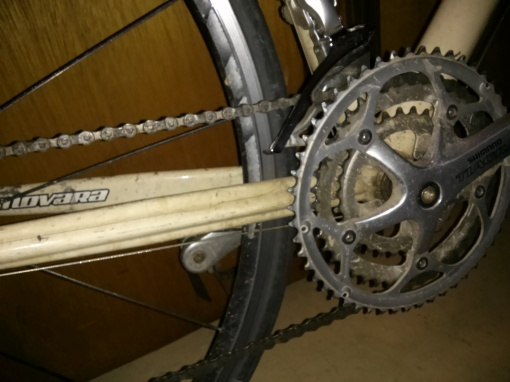 A bicycle chain transmits force to the drive wheel creating value!