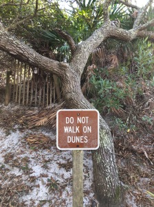 Do not walk on the dunes sign
